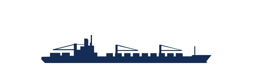 Container carrier with cranes